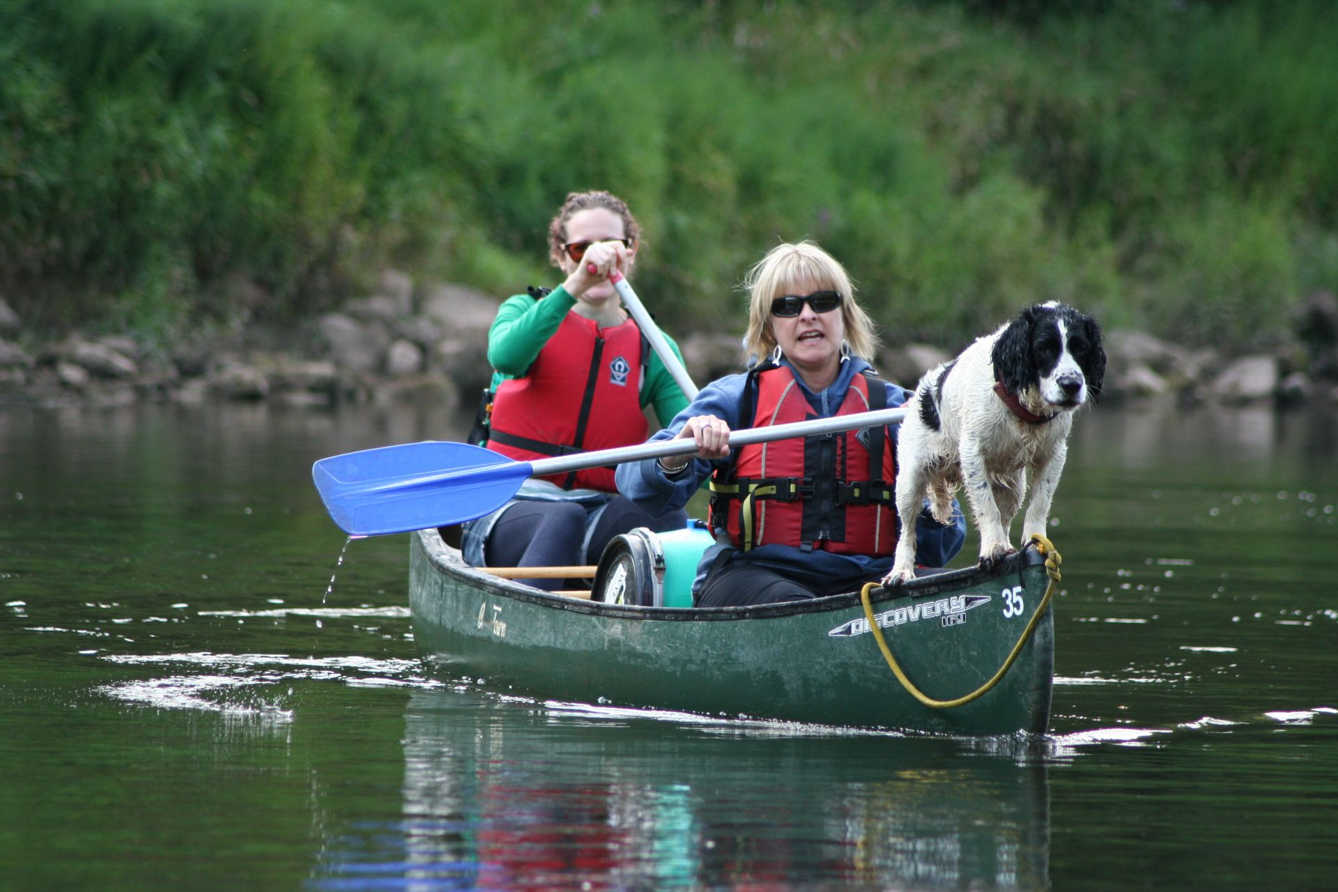 Canoeing the river wye with a dog